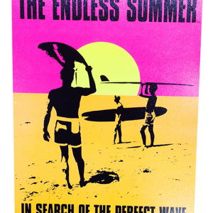 endless summer poster with the words in search of the perfect wave